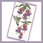 Humming Bird in Fuschia