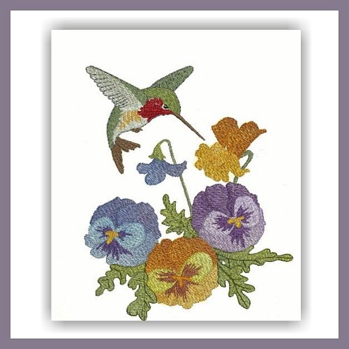 Pansy Hummer