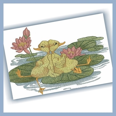 Ducks on a Lily Pad